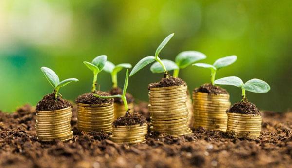 Особливості кредитування сільського господарства